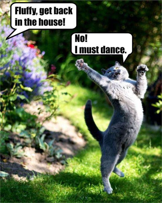 must-dance